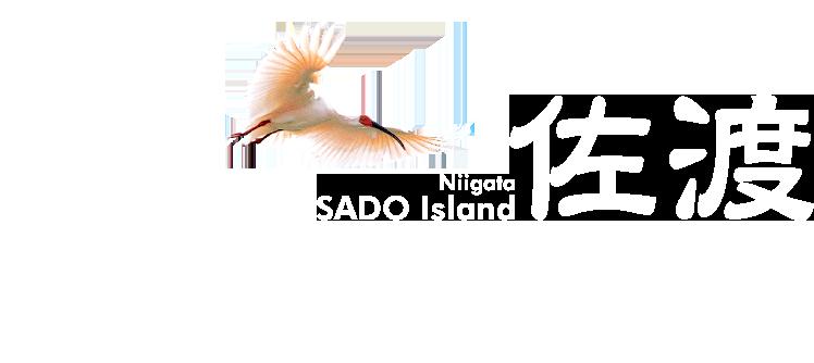 Niigata Sado Island 佐渡